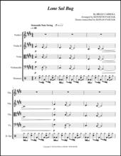 Lone Sal Bug Bucket String Quartet